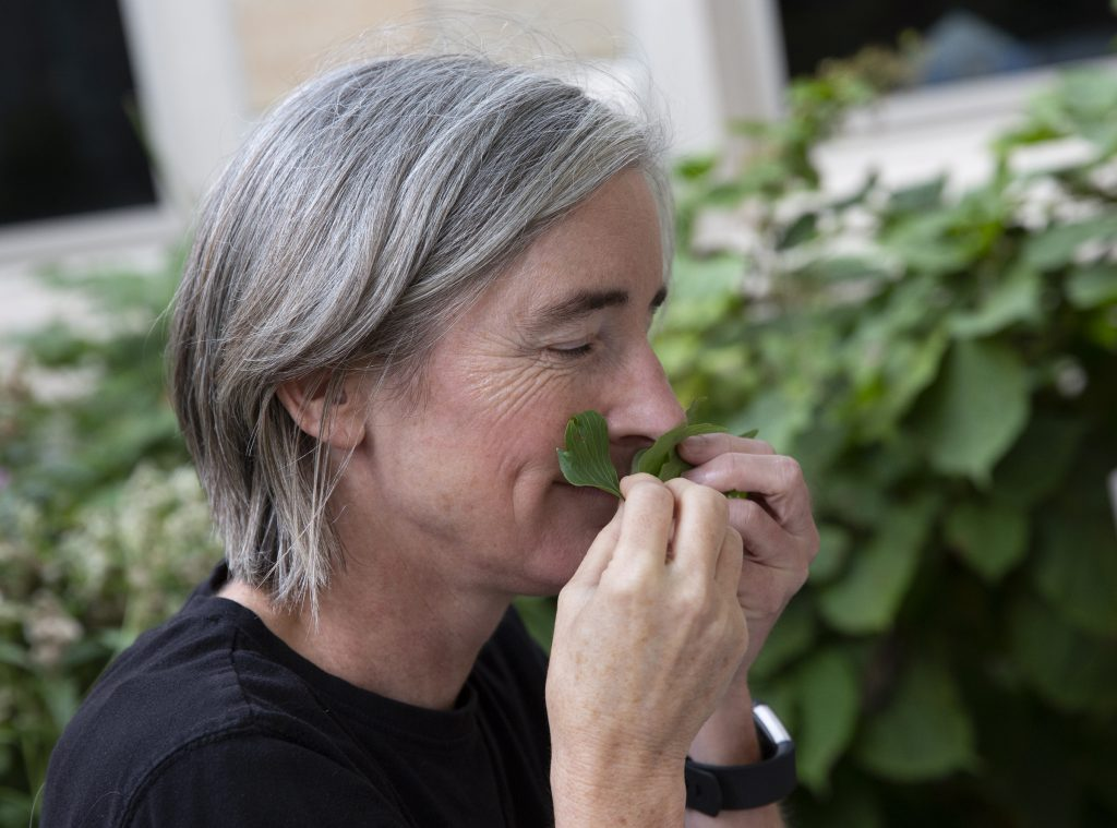St. Thomas greenhouse manager Catherine Grant sniffs an herb growing in a garden plot. (ThreeSixty/Christine Nguyen)